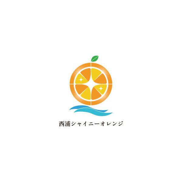シャイニーオレンジ